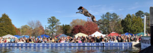 Waterfowl Festival | Favorite Eastern Shore Events | Powell Realtors