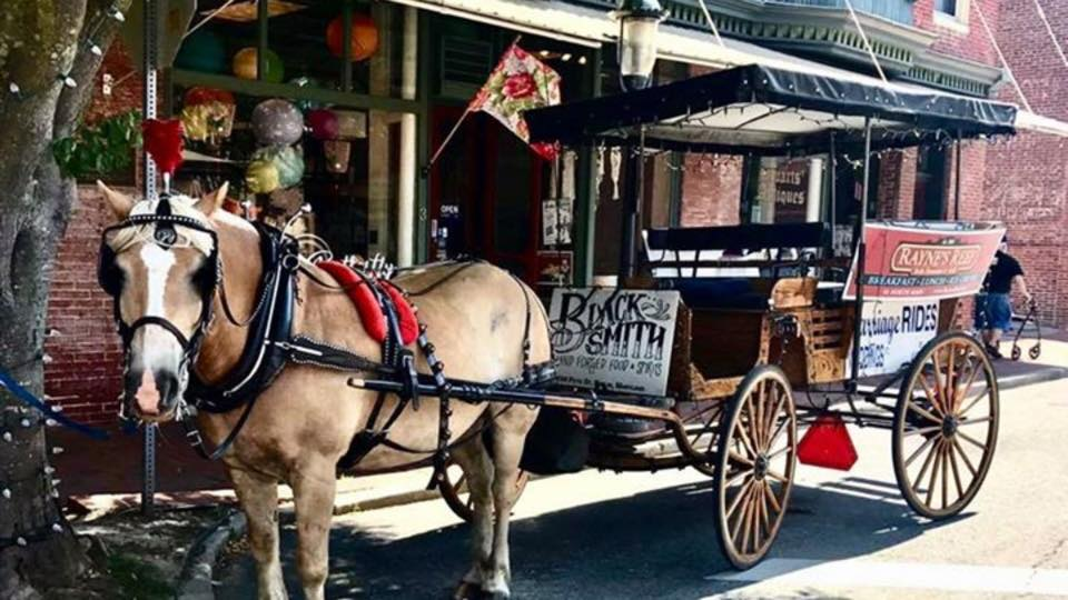 Horse and carriage at Christmastime
