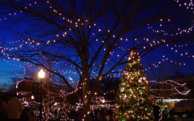 Six Holiday Events on Delmarva That Will Make You Feel Merry & Bright!